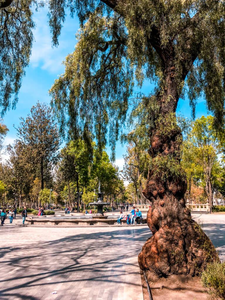 Mexico City's Alameda Central