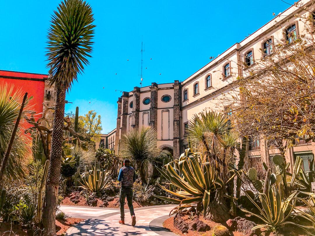 Mexico City's Palacio Nacional holds a gorgeous cactus garden