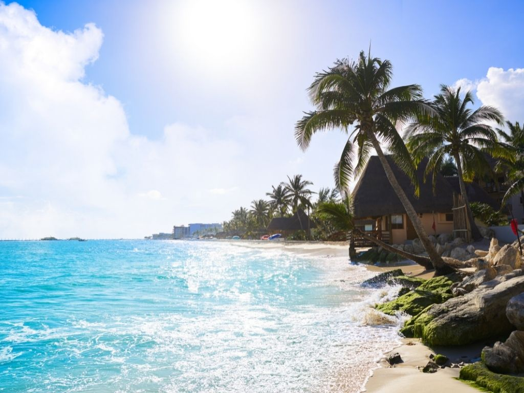 palm trees and palapas on the beach in playa del carmen