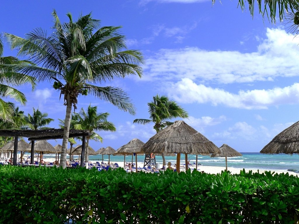 palapas on the beach in playa del carmen mexico